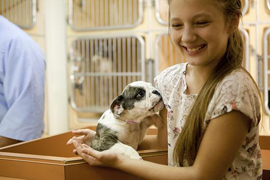 Virtual Race Dog Charities