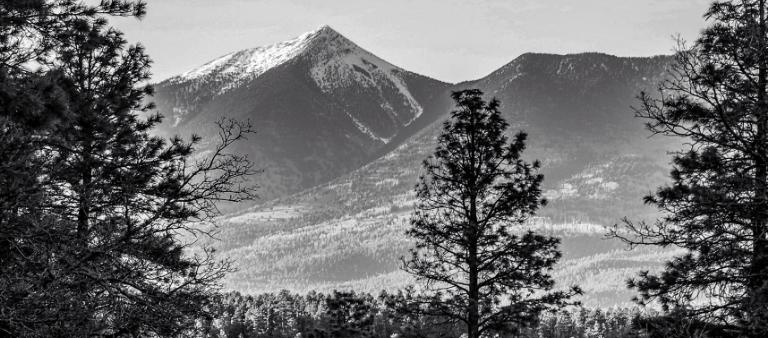 A Great View of Flagstaff Arizona