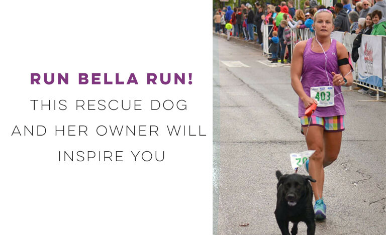 RUN BELLA RUN! This Rescue Dog and Her Owner Will Inspire You