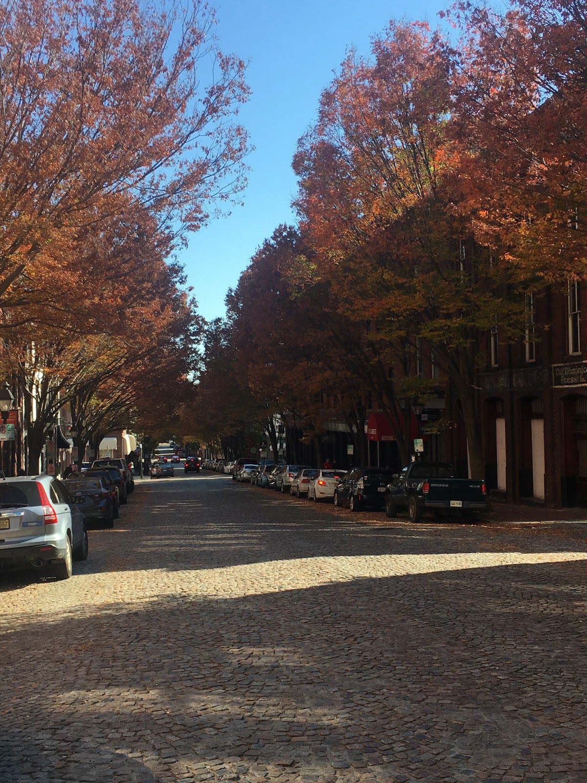 Fall colors in Richmond's Shockoe Bottom