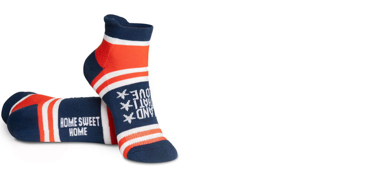 Land That I Love Patriotic Socks