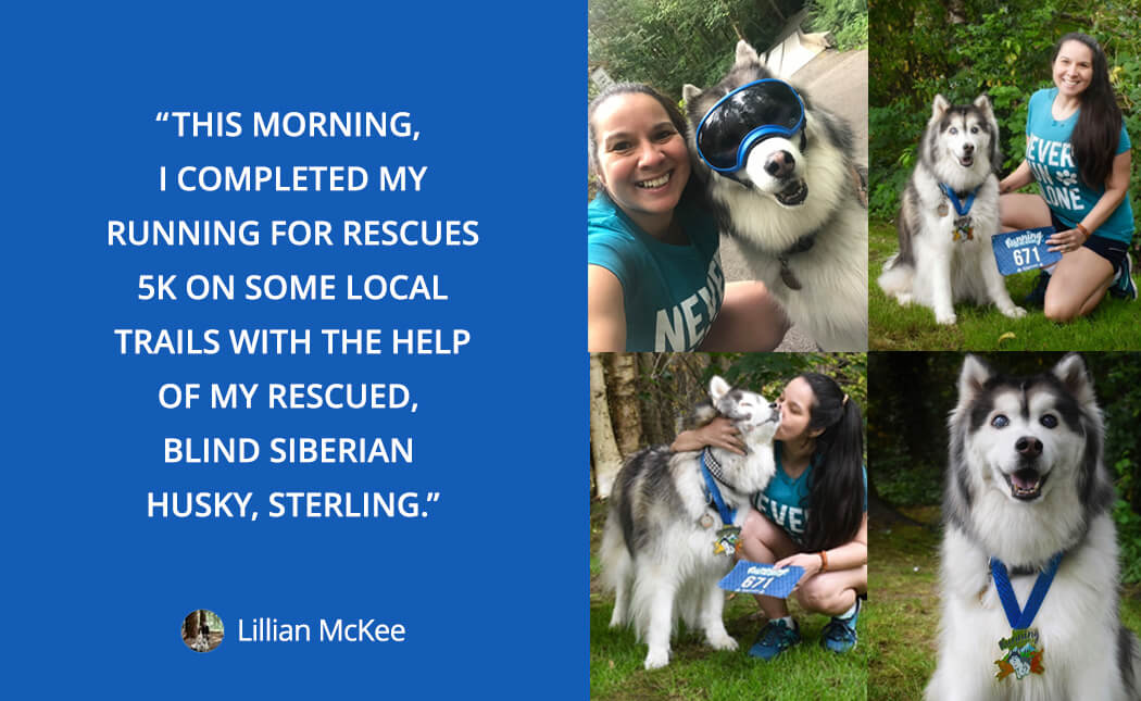 Lillian loves running with her dog: This morning, I completed my running for rescues 5k on some local trails with the help of my rescued, blind Siberian husky, Sterling.