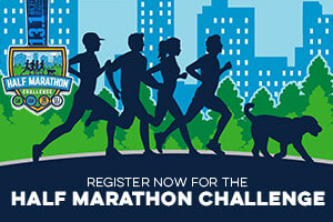 Register for a Half Marathon Challenge